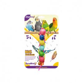 EuroBird Kuş Oyuncağı Renkli Dizili Boncuk