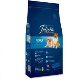 Felicia Az Tahıllı Somonlu Yetişkin Köpek Maması 15 Kg