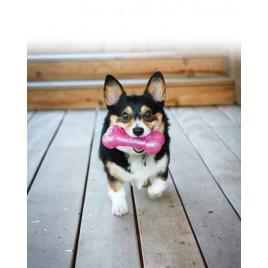 Köpek Squeezz Hışırtı Sesli Kemik L 19cm