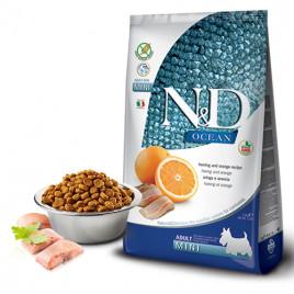 N & D Ocean Balık Portakallı Tahılsız Küçük Irk Köpek Maması 2,5 Kg