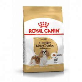 Cavalier King Yetişkin Kuru Köpek Maması 3 Kg