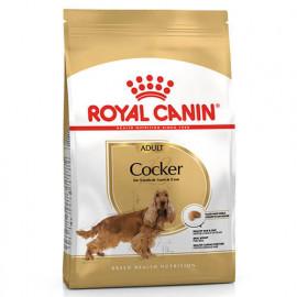Royal Canin Cocker Yetişkin Köpek Maması 3 Kg
