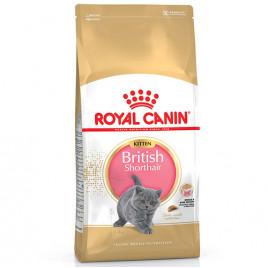 Royal Canin Kitten British Shorthair Yavru Kedi Maması 2 Kg