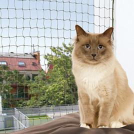 Kedi Cam Koruma Ağı 6x3M, Yeşil
