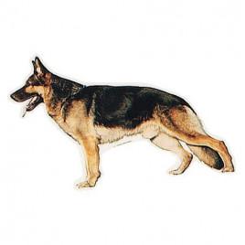 Köpek Çıkartması, St-German Shepherd 1 Ad.