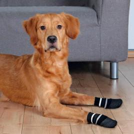 Köpek Çorabı, Kaymaz L–Xl, 2 Adet